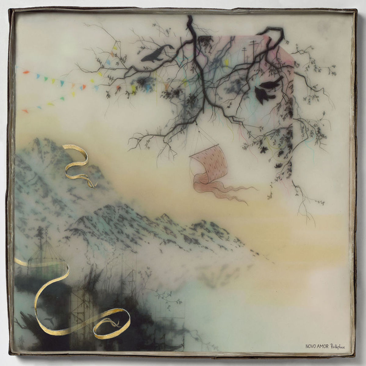 Articlehome novo amor birthplace album artwork