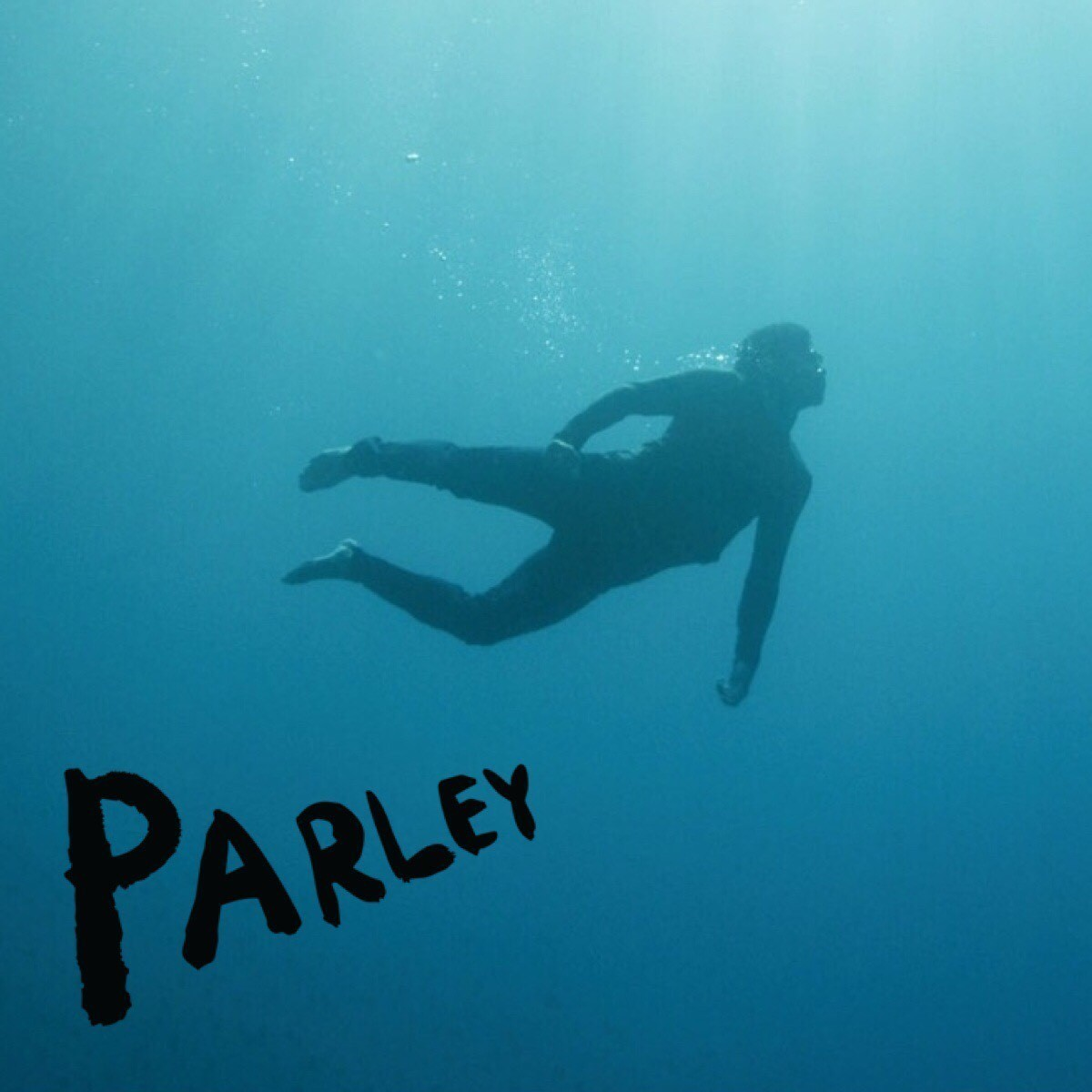 Articlehome presswebsite parley birthplace