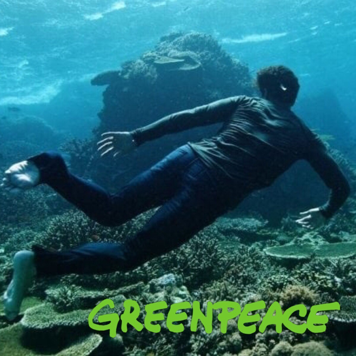 Articlehome novo amour greenpeace birthplace interview