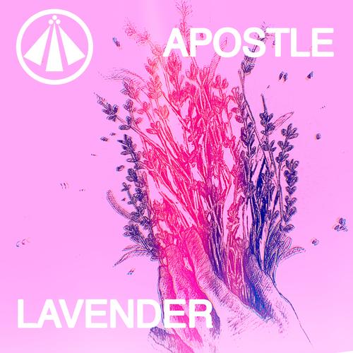 Artistmain apostle lavender art